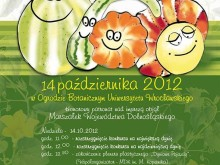 Dolnoślaski Festiwal Dyni